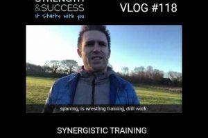 Synergistic Training